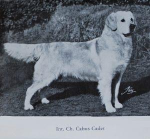 int-ch-cabus-cadet